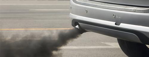 Poluição e osteosporose