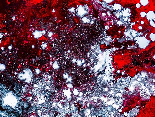 Vasos sanguíneos de laboratório